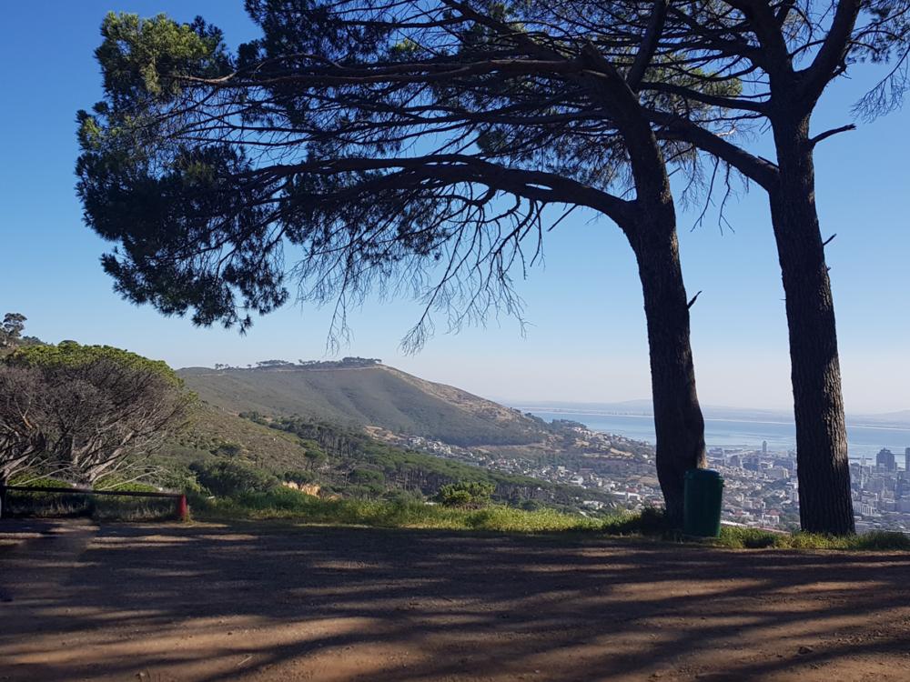 Auch wenn Kapstadt nicht direkt zur Gardenroute gehört, hier gehts bei den meisten mit der Reise los